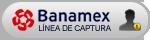 Linea de captura banamex